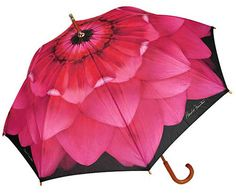 ** Dahlia Pink Umbrella