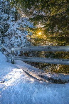 Winterstimmung -