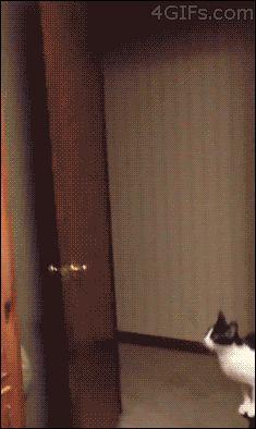 Impressive Jump