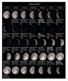 February 2021 Lunar Calendar Printable