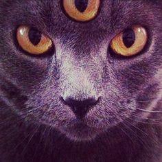 third eye #three