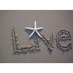 LIVE!!!