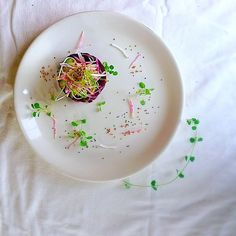 Vegan beet tartare! Avocado puffed quinoa chia and pomegranate vinaigrette. #foodblog #healthyfoodporn #chefsofinstagram #artofplating #glutenfreerecipes #veganfoodporn #glutenfreevegan #glutenfreelife #chefs #chefslife #chefstalk #instachef #personalchef #healthyeats by tastingeverything