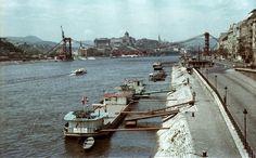 az épülő Erzsébet híd a Szabadság hídról nézve. Háttérben a budai Vár.
