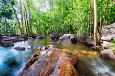 Litchfield National Park in Northern Territory, Australië