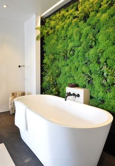 7 Modern Interior Trends Reinventing Classic Luxury and Versatile Functionality Green wall design, a vertical garden in your bathroom! Modern interior design ideas and color trends Design Case, Wall Design, House Design, Garden Design, Bathroom Trends, Bathroom Interior, Bathroom Modern, Bathroom Wall, Bathroom Green