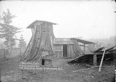 Trust us – Stump houses really were a thing - Outdoor Revival