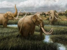 Bradley W. Giles - Detail of Mammoths from the Extinct Animals of Ice Age Las Vegas Valley