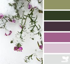 from Design Seeds.  As often with this color blog, the derived palette is less BW than the original picture.  That stark white snow is such a BW component. (And very hard to find in clothing, alas)