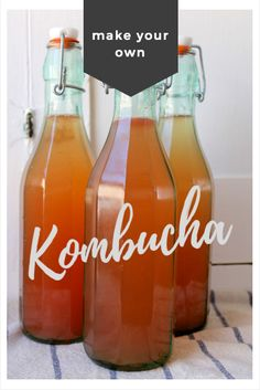 get kombucha: how to make homemade Kombucha – a starter kit - Health Detox Homemade Detox, How To Make Homemade, Drinks For Bloating, Make Your Own Kombucha, Detox Tea Diet, Body Detox, Detox Foods, Detox Drinks, Kombucha Starter