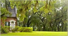 All of the guest houses are nestled in beautiful live oak patches, like this is a view of the North guest house from the Main house.