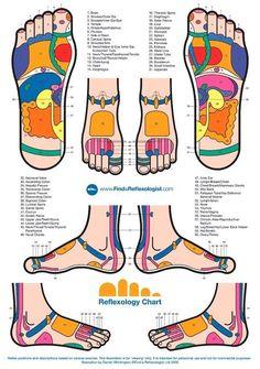 Reflexology Chart  http://www.tridoshawellness.com/  https://www.facebook.com/TridoshaWellness