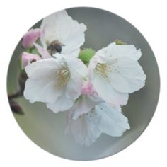 Radiant cherry blossoms dinner party plates