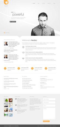 Nextbiz, WordPress Premium Powerful Grayscale Business Theme