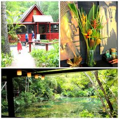 A Review of The Spirit House in Yandina Sunshine Coast, Empire, Spirit, Brisbane, House, Travel, Ideas, Food, Voyage