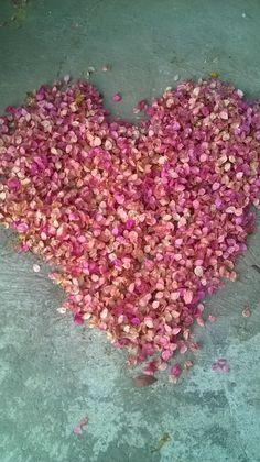 Corazón de flores de Trinitarias