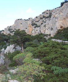 http://www.bbcalagonone.com - Strada Cartoe (settore Arcadio) - Arrampicata (free climbing) a Cala Gonone | Sardegna (Sardinia) http://www.bbcalagonone.com