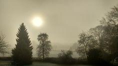 Morning walks in the winter photo by Helen TT