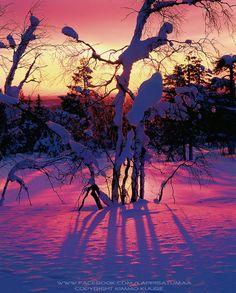 Luosto, Lapland, Finland.