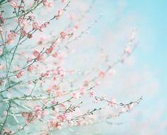 3月もよろしくお願いします⚘⋆*