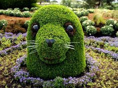 Awesome topiary.