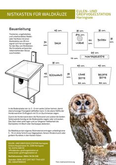 Build nesting boxes: owls and birds of prey . - Build nesting boxes: Haringsee owl and bird of prey station Build nesting boxes: Haringsee owl and - Woodworking Ideas To Sell, Antique Woodworking Tools, Woodworking Workshop, Woodworking Shop, Woodworking Projects, Woodworking Plans, Sketchup Woodworking, Youtube Woodworking, Woodworking Videos