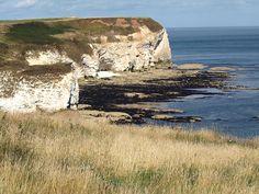 Coastline Workshop at Flamborough Head Interior And Exterior, Coastal, Landscapes, Workshop, England, Space, Water, Painting, Outdoor