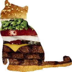 This burger cat was obviously fashioned from a Burger King ad, and that's OK.
