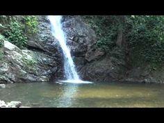 Waterfall Horseriding Tour Fiji - YouTube
