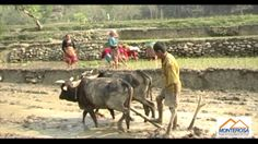 Introduction of Nepal, Welcome Nepal, Nepal tour, Nepal tour video, Kath...