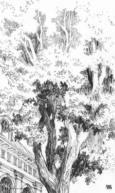Ink Drawing The gallery of personal drawings presenting architecture, greenery, geometry and other. Landscape Sketch, Landscape Drawings, Landscape Art, Tree Sketches, Drawing Sketches, Art Drawings, Pencil Drawings, Drawing Techniques, Drawing Tutorials