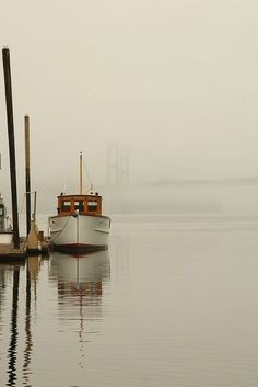 Fishing boat fog