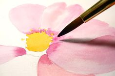 Watercolor Demo: wet in wet, wet on Dry: Cosmos Flower by Hsuan-Chi Chen In this demonstration, I am going to show you a couple of the ...