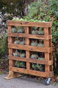 Jardín vertical hecho con un Pallet
