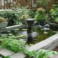 I& new to water gardening& and am getting lots of info before I get serious. I& gotten a lot of helpful advice from this forum. I& like to know the pros& to above ground ponds VS inground. Feel free to give personal opinions! Thanks,PJ Patio Pond, Diy Pond, Ponds Backyard, Backyard Landscaping, Garden Ponds, Tropical, Above Ground Pond, Raised Pond, Goldfish Pond