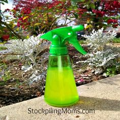 Homemade Mosquito Repellent #essentialoils #doterra