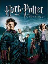 Lorsque son nom sort de la Coupe de Feu, Harry Potter devient l'un des concurrents du prestigieux Tournoi des Trois Sorciers, une lutte exténuante pour la gloire qui voit s'affronter trois Ecoles de Sorcellerie. Mais comme ce n'est pas Harry qui a soumis sa candidature, qui a bien pu le faire ? Et Harry va devoir affronter un dragon féroce, des démons aquatiques redoutables et un labyrinthe ensorcelé pour finir entre les griffes de Celui-Dont-On-Ne-Doit-Pas-Prononcer-Le-Nom...