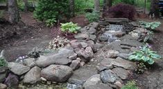 Services Portfolio - Christopher Smith Cape Cod Masonry Christopher Smith, Stacked Stone Walls, Dry Stone, Cape Cod, Stepping Stones, Gardening, Outdoor Decor, Plants, Cod