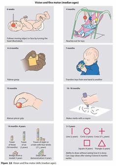 Milestones Pediatric Milestones, Baby Development Milestones, Baby Milestones, Infant Toddler Classroom, Toddler Behavior, 2 Month Old Baby, Solids For Baby, Baby Sensory, Baby List