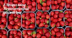 Strawberries are in season which makes them cheap, sweet and in abundance. Apart from eating them as they are, they are the perfect addition to many baked treats. Try them in these recipes: