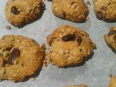 Biscoitos de aveia e chocolate sem açúcar