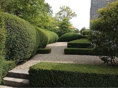 Organic forms with formal box clipped hedges