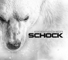 album cover art [01/2015]: eisbrecher ¦ schock |