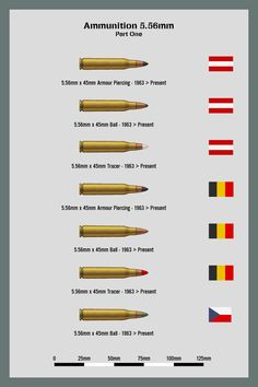 Ammo Chart 556mm Part 1 By WS Clave