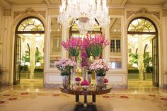 It's hard to decide what to do when visiting New York City, but there's a few staples one can always rely on. Top of our list: The Plaza Hotel. Stop by this week to see pink hues of Celosia, Cymbidium Orchids, Lilies and Gladioli in the Ave. Plaza Hotel, Hotel Lobby, Hotel Flowers, Gladiolus Flower, Visit New York City, Orchid Arrangements, Cymbidium Orchids, Lilies, Flower Decorations