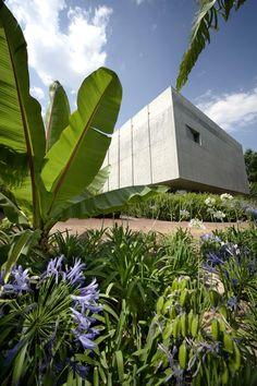 alberto kalach / jardín botánico de biblioteca pública, méxico df