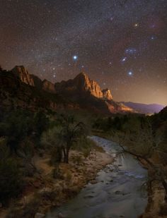 Half the park is after dark when the night skies come alive with dazzling stars. In the winter, skies are filled with a whole new catalog of stars, making the experience even better. Derek Culver took this amazing photo in December of Zion National...