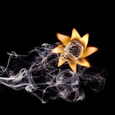 Cada persona brilla con luz propia entre todas las demás. No hay dos fuegos iguales... Eduardo Galeano.
