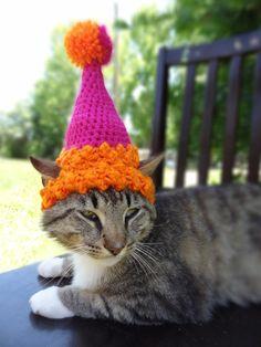 Cat Dog Birthday Party Hat The Custom por iheartneedlework en Etsy