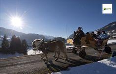 Ein Urlaubserlebnis der besonderen Art. Eine Pferdekutschenfahrt durch die zauberhafte Winterlandschaft in Goldegg am See. Foto: Schaad Andreas Hotels, Andreas, Mountains, Nature, Travel, Animals, Nature Activities, Ski Trips, Winter Vacations